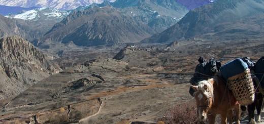 Nepal-trekking-tours